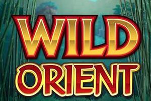 Wild Orient Online Slot